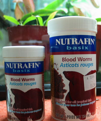 Dried Blood Worms
